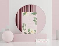 马来西亚《AYMEIR》品牌包装设计—Beauty from Within