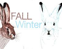 Fall - Winter