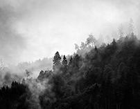 Monochromic Vosges
