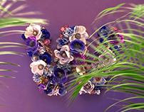 Dolce & Gabbana - Rainbow Lace