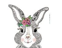 Rabbit ♥