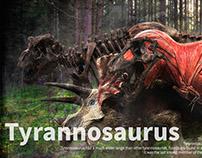 Tyrannosaurus infographic