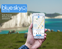 sky blue software consulting firm