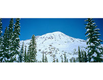 MOUNT RAINIER FILM PANORAMAS