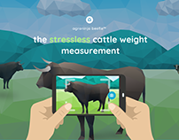 Agroninja Beefie - a digital scale for cattle