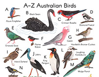 A-Z Australian Birds Art Print