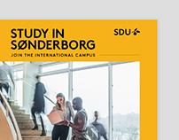 Study in Sønderborg