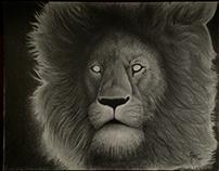GRAPHITE LION