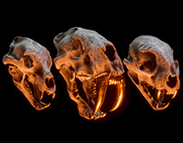 Billelis 3D Skull Pack Vol 3 - Predators