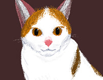 Phillip J. Fry Pixel Cat
