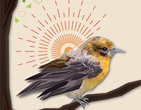 Geometric Project - Bird