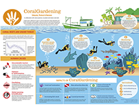 Infographic for Dutch ngo CoralGardening