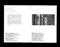 édition programme