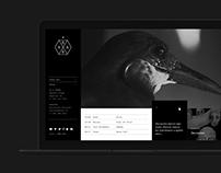 Assai official site