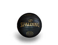 Spalding - 125th Anniversary of Basketball