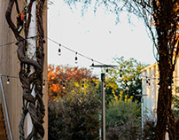 UT Dallas - Outdoor Shots