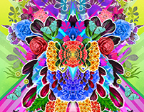 Psychedelic Floral Explorations