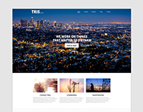 TRIS.COM.VN - redesign website