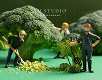 Creative Project • Miniature Photography