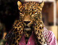 Leopard: New Guise
