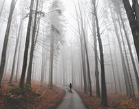 Foggy highlands