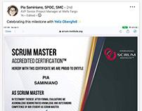 Scrum Institute Certified Scrum Master