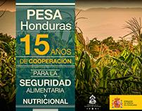 PESA Honduras - Microsite