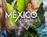 México Sostenible | Branding