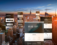 Profi – Business, Professional WordPress Theme