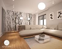 Private home project Timisoara