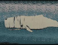 Whale & Whale