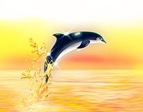 Oceanside85 Cover Album Artwork