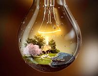 Light Bulb of Life