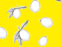 one 2 sec animation a day - lemons