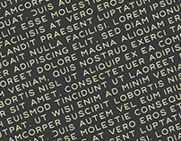 PATRON I variable font