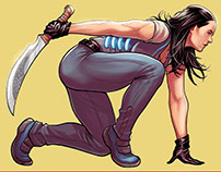 Covers for Frank Cho's Skybourne