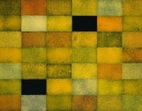 Miles Allen-Freestyle Tout, Rosalie, Qld – June 2003