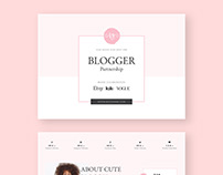 Blogger Proposal