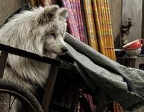 """""""China Rural"""" - Street Life."""