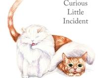 Children's book: The Curious Little Incident