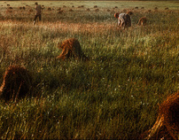 Пейзаж (1965-1975).