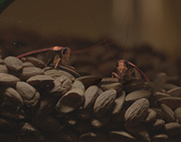 """All The Best"" movie - CG cockroaches VFX sequence"