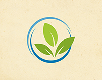 Brand Verde Blu - Logo Design