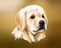 Puppy Love | Labrador Retriever | Digital Painting