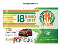 Arteli - Carrera 2017