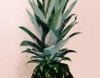 | crazy pineapple |