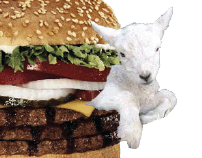 Burger King Lamb Burger