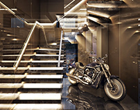 Extraordinary 3dViews for winding staircase design.