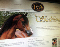 TGS Arabians v.6
