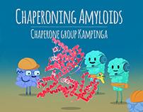 Chaperoning Amyloids